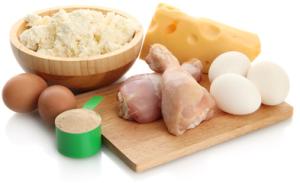 Tierisches Protein