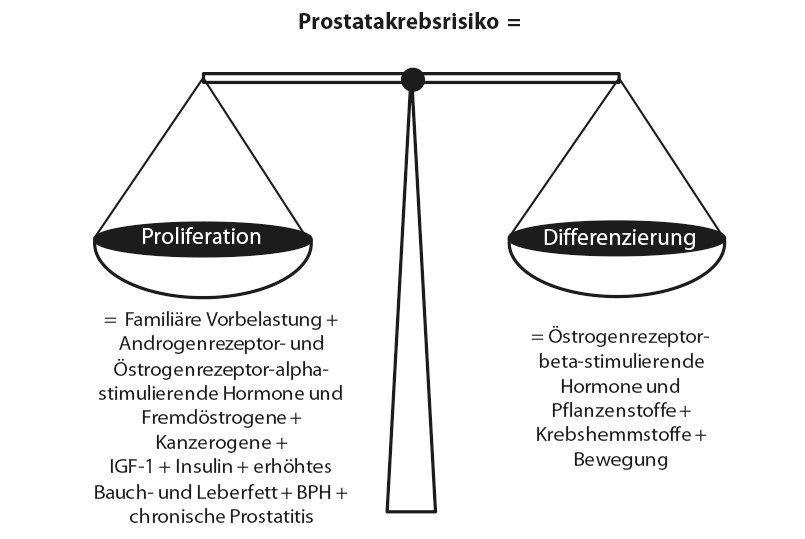 Prostatakrebsformel